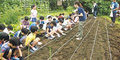 大豆栽培通じて地域貢献