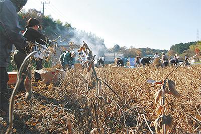 大豆収穫で資源循環学ぶ
