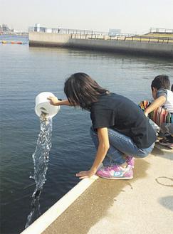 稚魚を放流する向小の児童