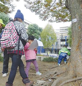 樹木を観察しながら回答する参加者