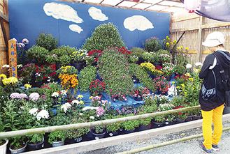 会員の作品を集合させた特別展示花壇