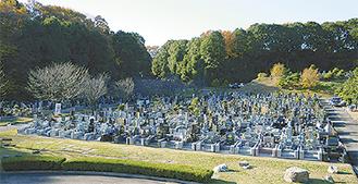 利便の良さ環境の良さが人気の市営霊園(写真は緑ヶ丘霊園)