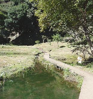 市内の貴重な湧水地も調査できる(麻生区黒川)