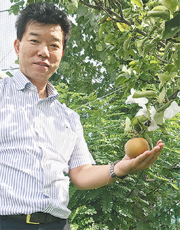 長十郎梨の実を手にする渡辺成昭教頭