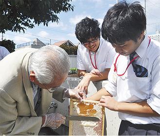 蜜蓋を削る参加者(左)