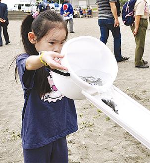 稚魚を放流する子ども(昨年)