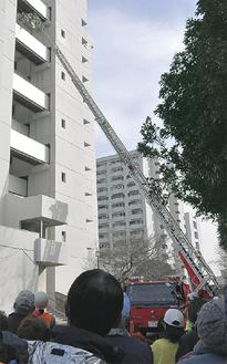 はしご車救助の様子を見上げる参加者