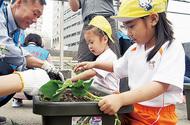 エコ活動、園児と苗植