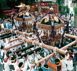 祭りに華を添える神輿(稲毛神社)