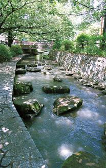遊歩道が整備され、市民に親しまれる二ヶ領用水宿河原堀