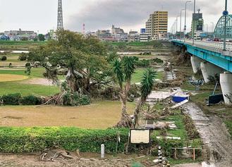 台風19号で倒木被害などにあった多摩川河川敷(多摩川大橋付近)