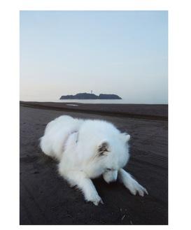 最優秀賞に輝いた畠山さんの『雲と江ノ島』