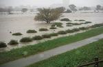 幸区から見た増水した多摩川(令和元年東日本台風)