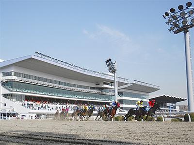 川崎競馬で「JBC」開催