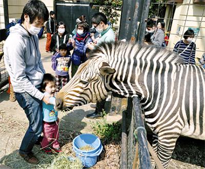 動物との触れ合い楽しむ