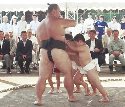 相撲の四谷小復活へ