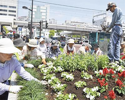 駅前花壇に花植え
