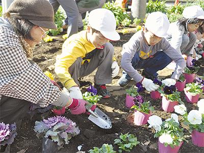 下平間小児童が花植え