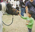 ▲馬のエサやりに挑戦