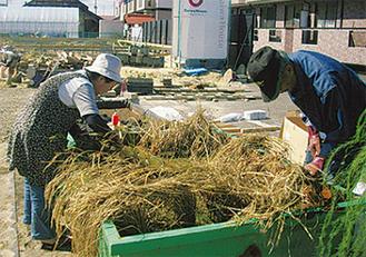 収穫を喜ぶ仙台市若林区の庄子夫妻