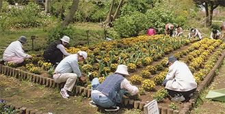草花ボランティアの活動風景
