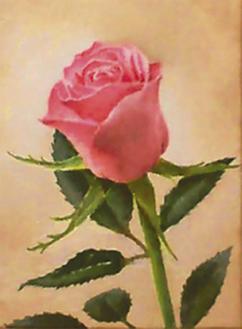 バラの油彩画