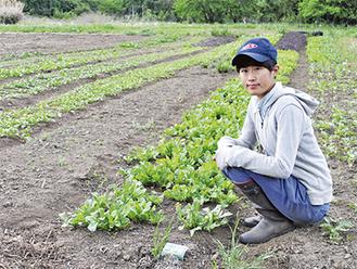 農園を管理する藤野さん