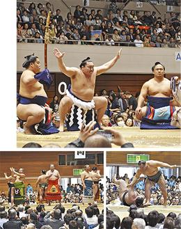 横綱・白鵬関の土俵入り、臥牙丸関を投げる北太樹関(下右)、観客を沸かせた相撲甚句(同左)