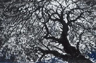 戸田みどり「フクシマに咲く花」