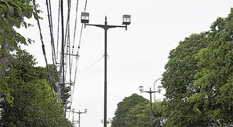 市内の道路照明灯=24日撮影