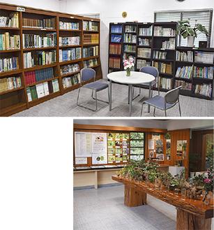 約3千冊の専門書が並ぶ図書室(上)季節に合わせた展示も行われる(下)
