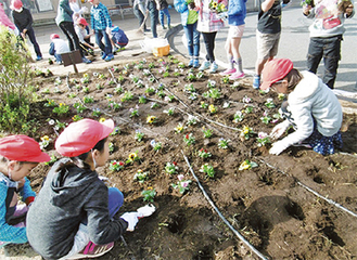 花壇への植え付けを行う児童たち=1日