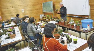 寄せ植えの体験をしながら山野草について学ぶ同講座(写真は過去)