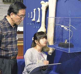 真剣な表情で骨格標本を描く児童と高槻氏