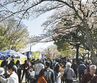 飲食ブースには多くの人々が集まるなどにぎわいを見せたさくらまつり=3月31日、鹿沼公園