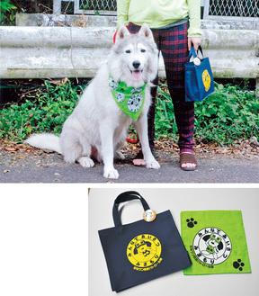 防犯グッズのバンダナを首に巻く登録犬(上)/オリジナルのバッグなどの防犯グッズ