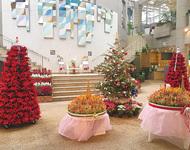 熱帯植物でクリスマス