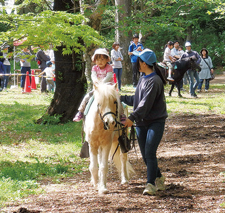 好評のポニー乗馬体験
