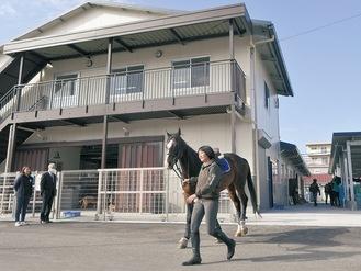 1階は馬房、2階は馬術部などのミーティングルームや更衣室が入る