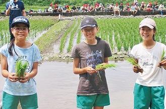 米の苗を手に笑顔の児童=15日