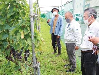 町田さん(左)の説明に聴き入る本村市長(左から2番目)。右は森山代表=8月25日、緑区田名