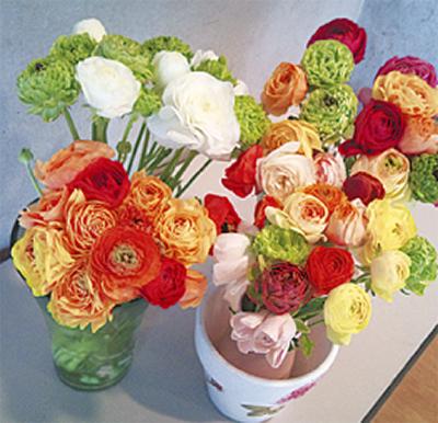 お花で「元気になって」