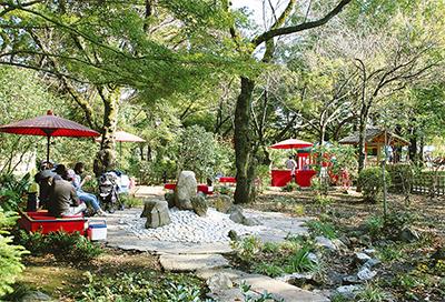 奥ゆかしき日本庭園