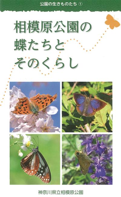 蝶のハンドブック完成