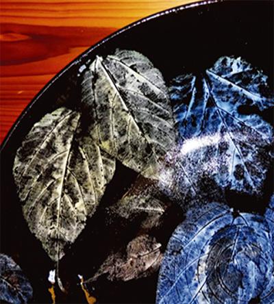 葉脈文様光る陶芸の数々