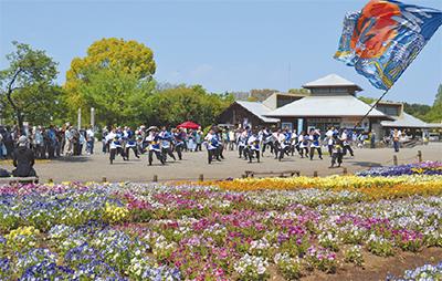 花とダンスなど春の祭典