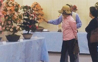 さつき盆栽展示会