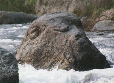 「えっ」お猿の顔