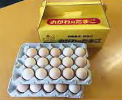 返礼品、卵など人気
