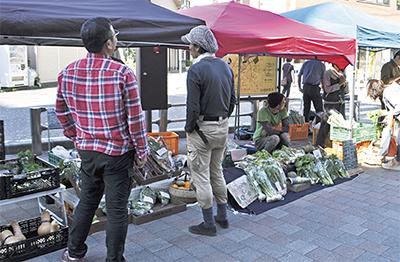 今が旬、地元野菜集結